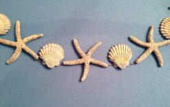 garland with shells and starfish